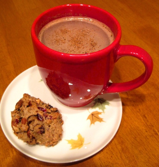 Hot Chocolate and Fruit and Nut Cookies