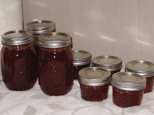 Jalapeno Pepper Jelly Jars